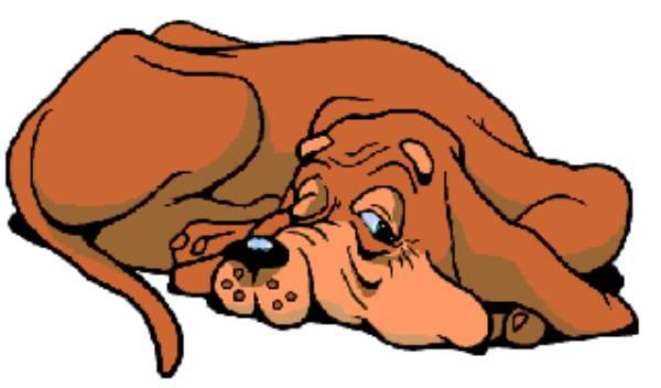 Картинки собачек анимации, тимуровцы